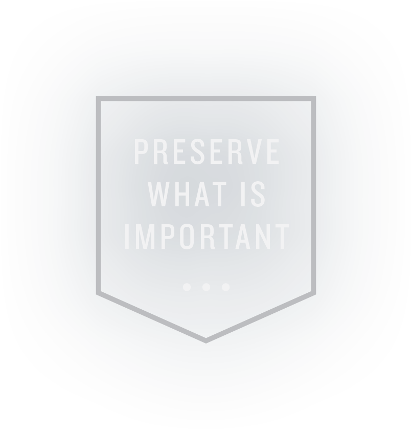 Preserve what is important